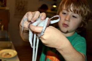 Bruno rensar bläckfisk