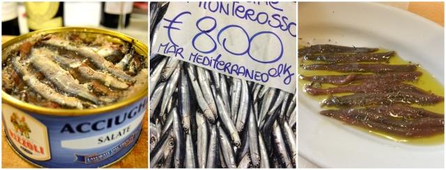 Sardeller färska, saltade och inlagda, från Monterosso i Cinque terre